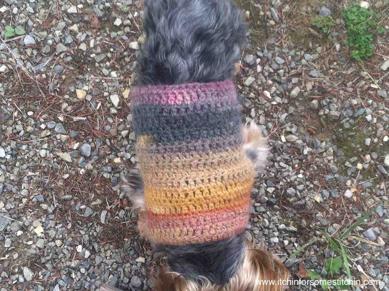 bee9dc8c3 Quick and Easy Crochet Small Dog Coat Pattern by  http   www.itchinforsomestitchin