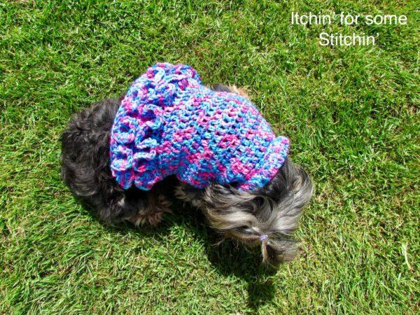 Ruffled Small Dog Sweater Pattern by www.itchinforsomestitchin.com