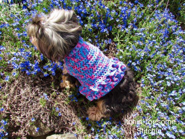 Small Dog Sweater with Ruffles Pattern by www.itchinforsomestitchin.com