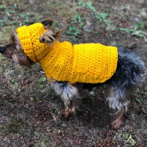 Small Dog Hoodie Sweater Pattern by itchinforsomestitchin.com
